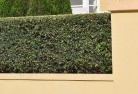 Adavale Hard landscaping surfaces 8
